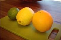 Citrus feature